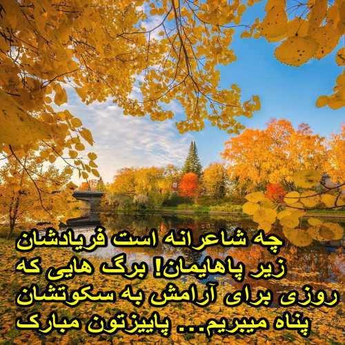 چه شاعرانه است فریادشان زیر پاهایمان! برگ هایی که روزی برای آرامش به سکوتشان پناه میبریم… پاییزتون مبارک