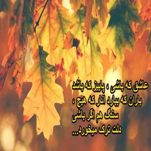 عاشق که باشی ، پاییز که باشد  باران که ببارد انار که هیچ ،  سنگ هم اگر باشی  دلت ترک میخورد...