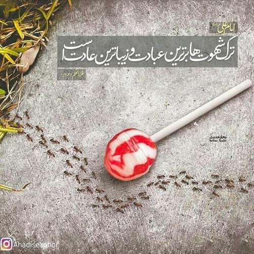 عکس نوشته امام علی علیه السلام