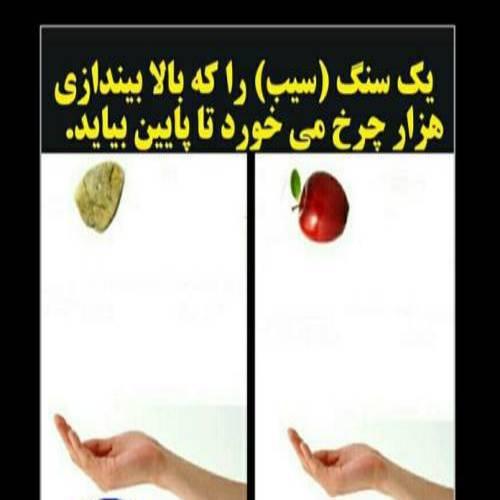یک سیب را که بالا بیندازی هزار چرخ میخوره تا پایین بیاد